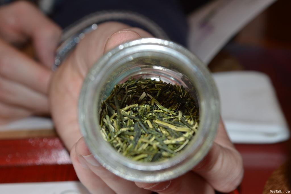 The Green Teaist - USA