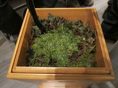 Abwasserbehälter mit Teeblätter