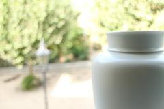 Vase und Natur im Hintergrund