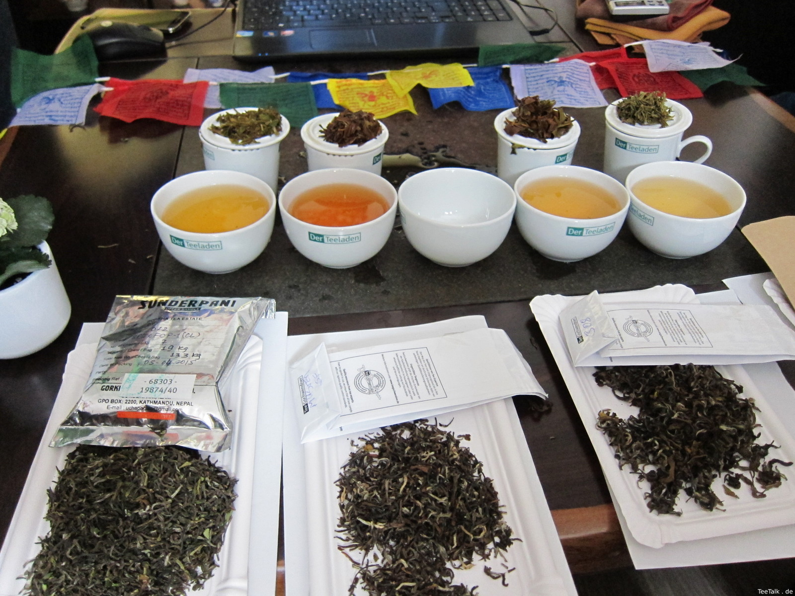 Tee-Nepal Vortrag