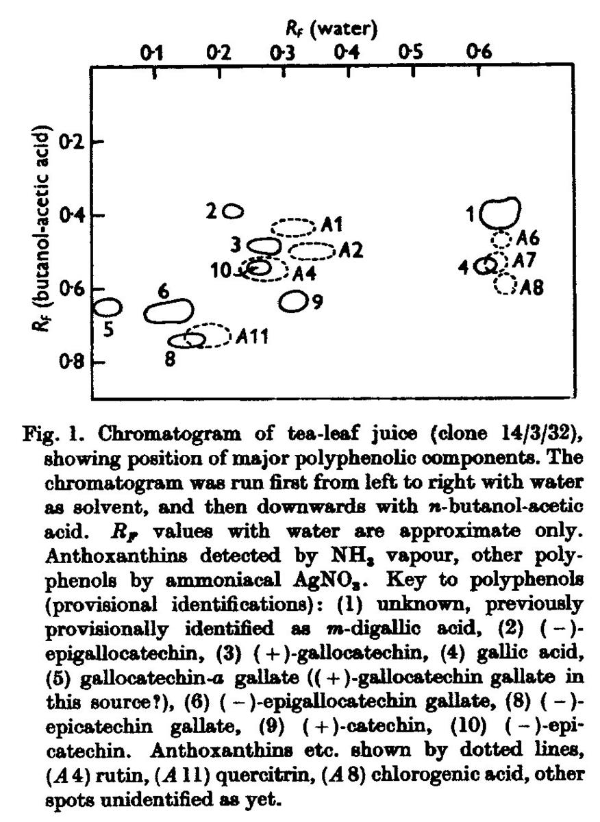 Chromatogramm ais Biophys. J.
