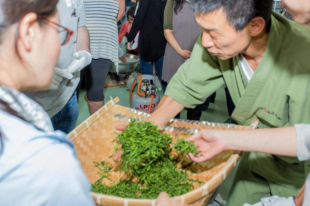 Tea-Picking-43.thumb.jpg.c988954341def7c40d2f510d1ab2cfd1.jpg